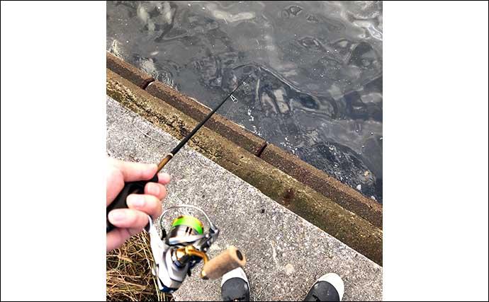 まずはここから覚えたい『カサゴゲーム』用語集:釣り方&ポイント関連