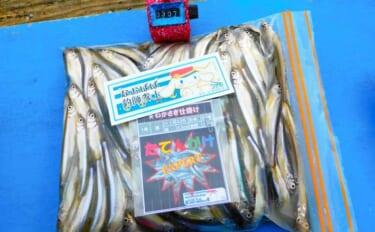 ワカサギ釣りで307尾 アタリすらない『激渋』対応策とは?【間瀬湖】