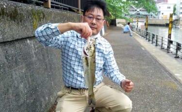 エサを使った『チョイ投げシーバス』釣りのススメ 初心者でも簡単
