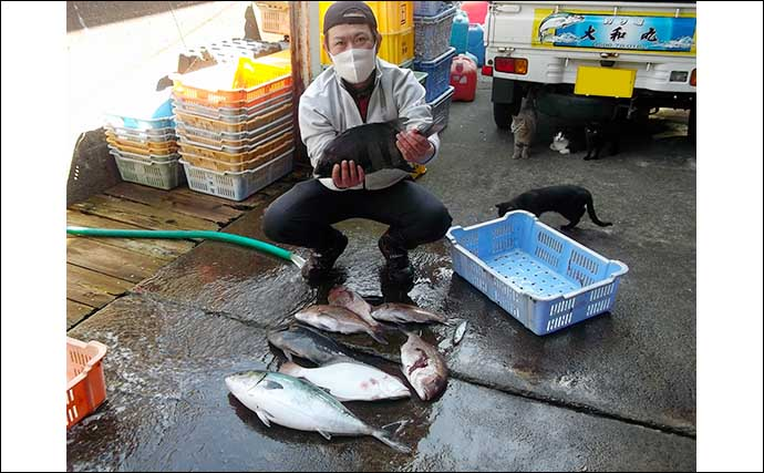 【三重・愛知】海上釣堀最新釣果 メガ大ダイに天然ヒラメと美味魚続々
