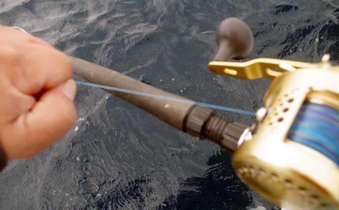 【2021南房】コマセイサキ釣りが開幕から好調 基本の釣り方を紹介