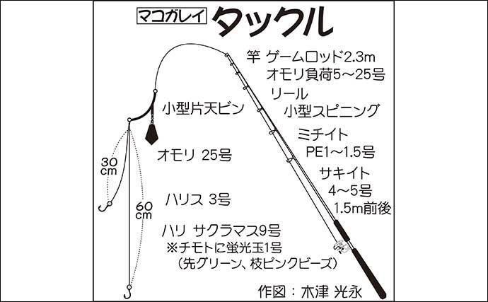 東京湾『花見ガレイ』釣りが開幕 潮がわりに本命マコ2連発【荒川屋】