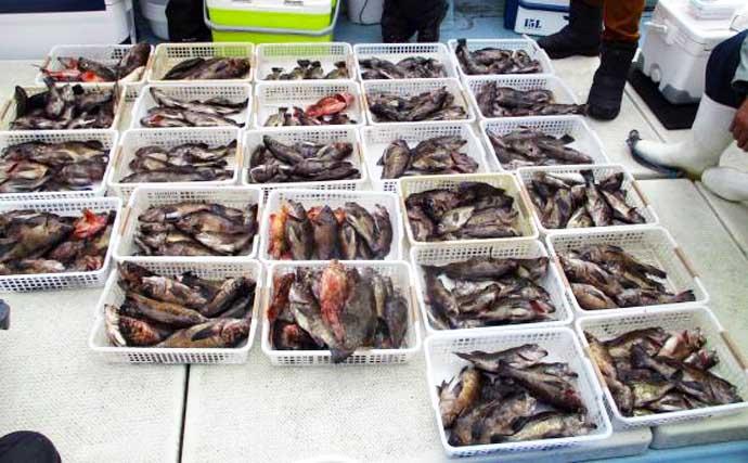 【大分・熊本】沖釣り最新釣果 大型シロアマダイに大五郎アラカブ登場