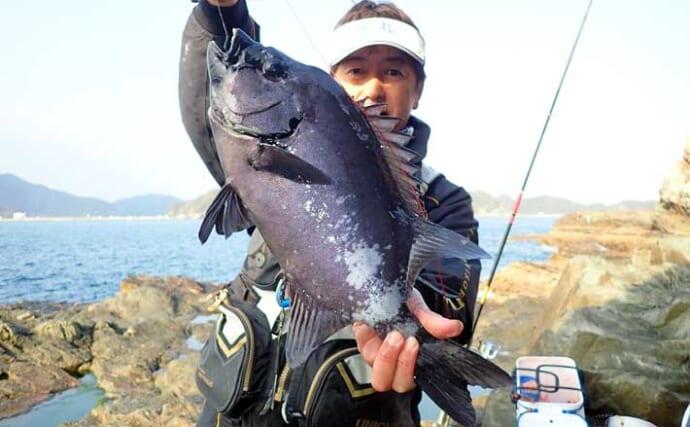 良型イシダイ浅ダナに接近中 石物釣りで2.5kg『銀ワサ』手中【鹿児島】