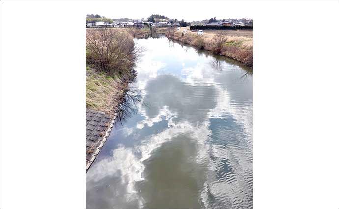 今週のヘラブナ推薦釣り場【茨城県・清明川】