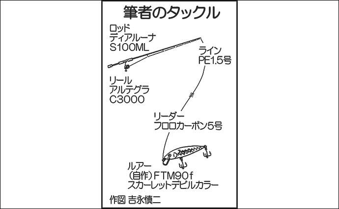 シーバスゲームで54cm頭に本命2匹 ベイトは「稚アユ」【熊本・白川】