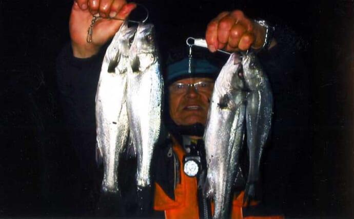 夜の堤防からのエサ釣りで42cm頭にシーバス5匹 セイゴサイズが中心