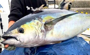 【三重】沖釣り最新釣果 トンボ狙いのジギングで58kgキハダマグロ浮上
