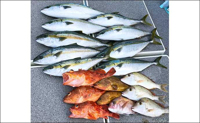 【玄界灘】沖のルアー最新釣果 キャスティングで16.72kg大マサ登場