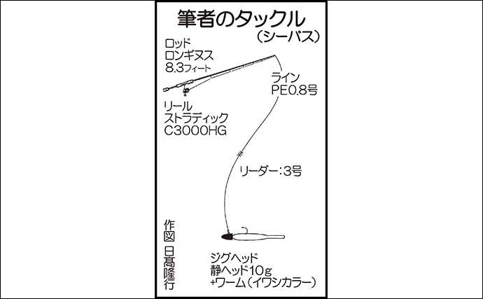 ナイトシーバスゲームで74cm 堤防ギワの『テクトロ』で攻略【熊本】
