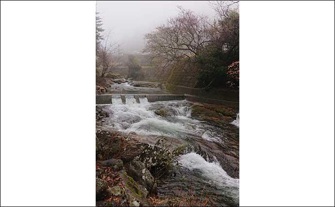今さら聞けない渓流釣りのキホン:海釣りとは異なる5つの魅力とは