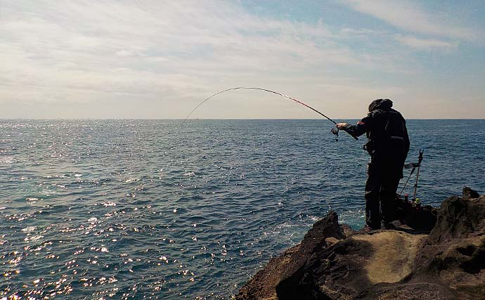 フカセ釣りで38cm頭にメジナ9尾 エサ取り少なく納得釣行【城ヶ島】