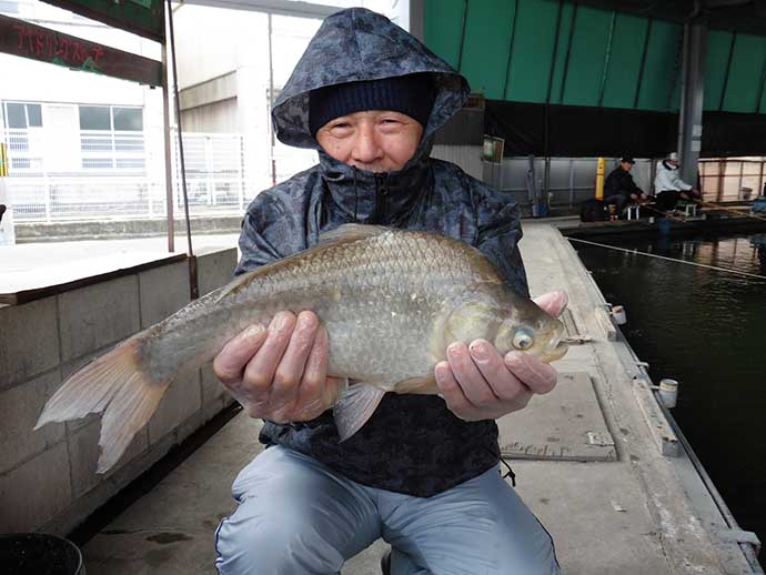管理池でヘラブナ釣り バラして終わるも周囲で40cm超も【大阪・西池】