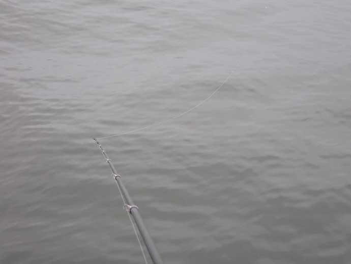 『フカセクロダイ釣り』ステップアップ解説:強風時の仕掛け操作術3選