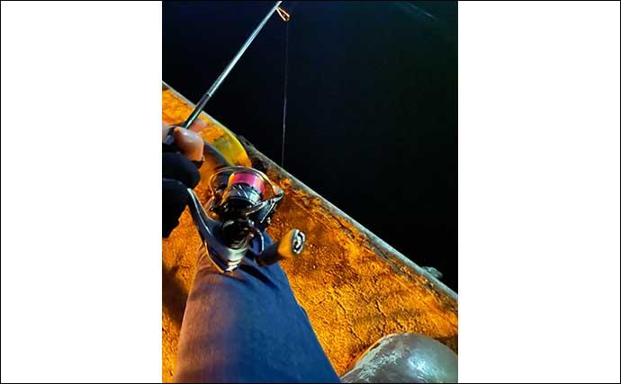 『メバリング』ステップアップ解説:「月周り」と釣りやすさの関係は?