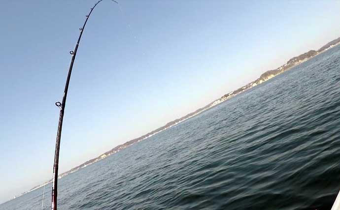 【2021春】手こぎボートから狙う「乗っ込み」コマセマダイ攻略法