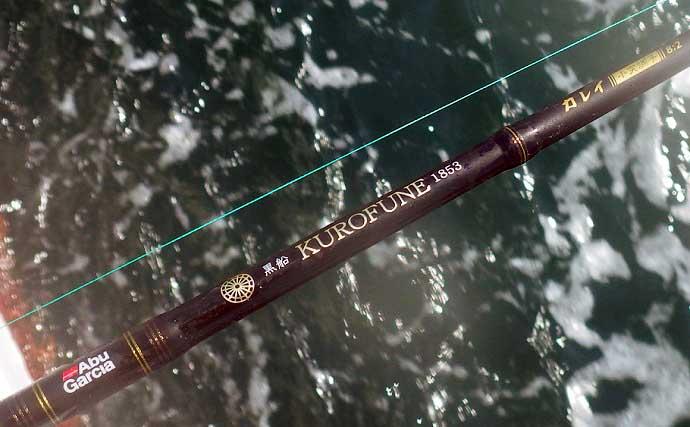 【2021】常磐『小突きカレイ釣り』徹底解説 種類多彩に数釣りも狙える