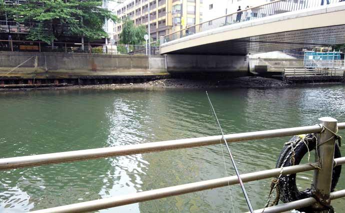 エサを使った『チョイ投げシーバス』釣りのススメ:場所と潮回りの関係