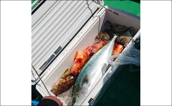 【愛知・三重】沖のエサ釣り最新釣果 良型中心にカワハギ大箱満タン