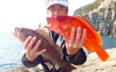 磯からの「ブッ込み」釣りで良型ハタ類キャッチ 遠投が奏功【鹿児島】