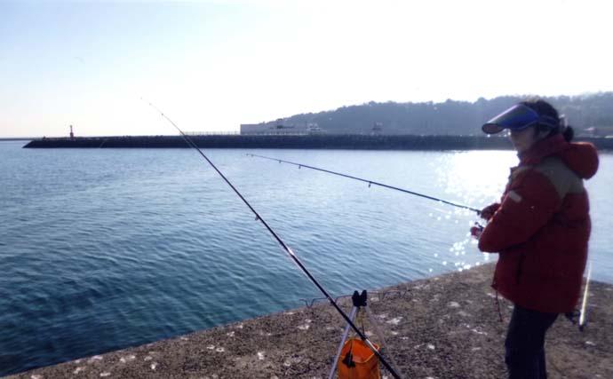 波止での投げカレイ釣り 3ヶ所ランガンも本命不発【大分・国東】