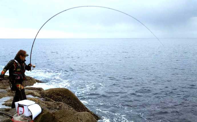 【中部2021】磯から狙う「乗っ込み」クロダイ 速攻全遊動釣法とは?