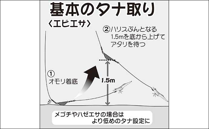 【東京湾2021】通年楽しめる「エサ&ルアー」マゴチ釣り初心者入門