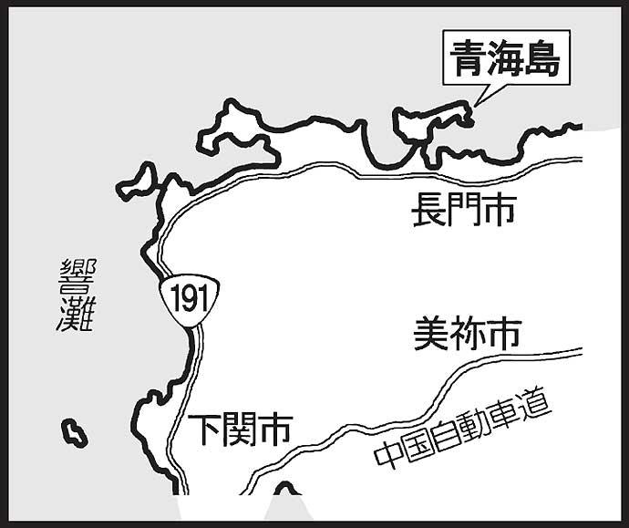 陸っぱりヤリイカエギングで本命16匹 キビナゴ使った邪道エギにヒット