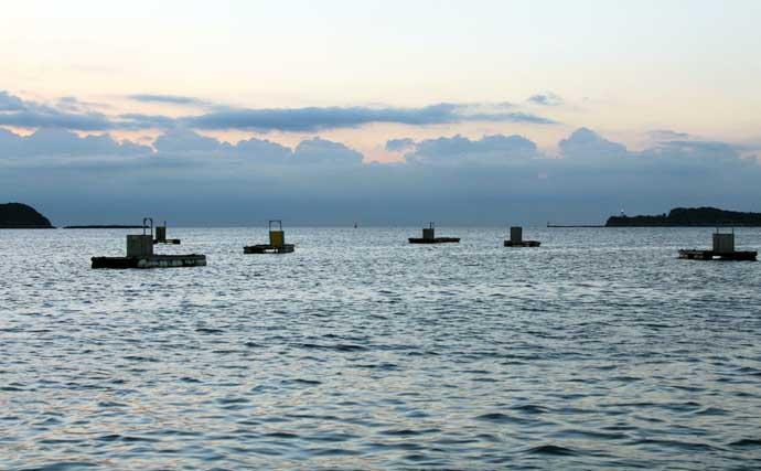 「山本太郎」の好釣果へのターニングポイント:チヌの乗っ込み攻略法#1