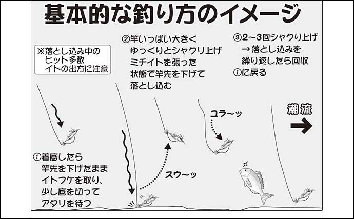 【2021】千葉&茨城エリアのテンヤマダイ&タイラバ初心者入門