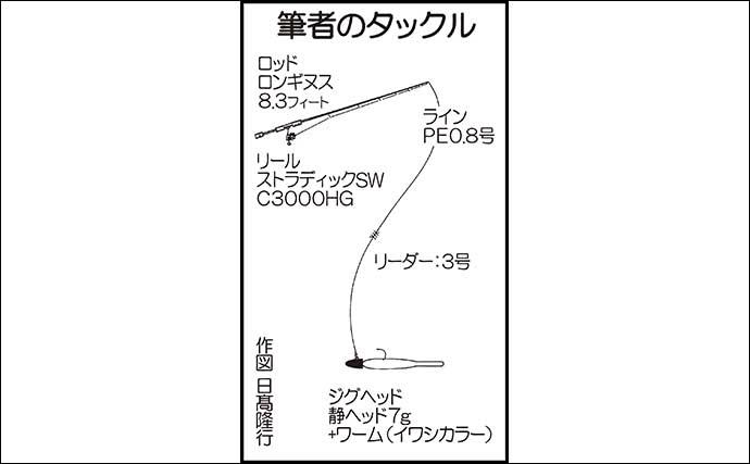 ルアーシーバスゲームで60cm 堤防のキワを8の字アクションで狙う