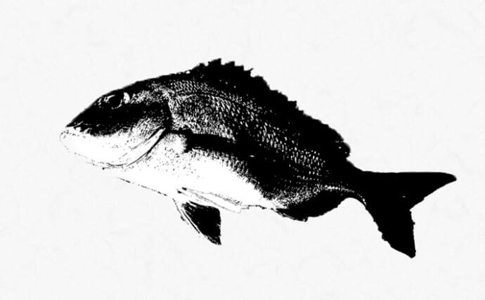 自宅で出来る『魚拓』の自作方法 材料は100均グッズだけでOK