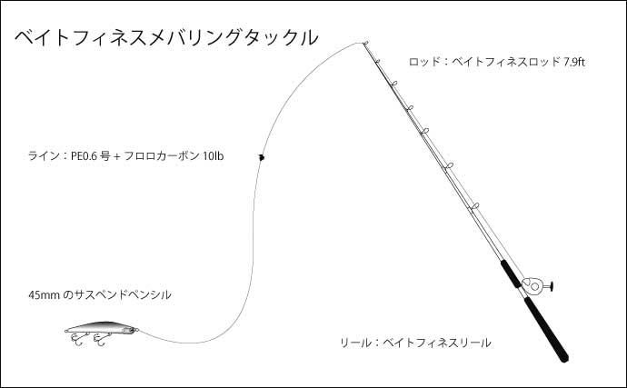 地磯メバリングで『尺メバル』キャッチ プラッギングで攻略【神奈川】