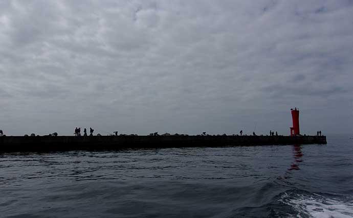 沖堤防での投げサビキでデカアジを狙う 常連の技ヒントに本命手中