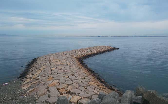石積み波止でのメバリングでメバル連発 朝マヅメにヒット集中【大阪】