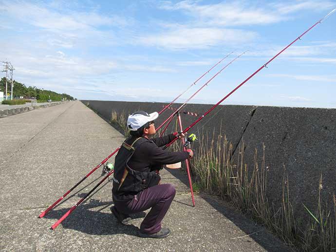 投げカレイ釣りで34cmマコ 潮動き出しでヒット【兵庫・東二見人工島】