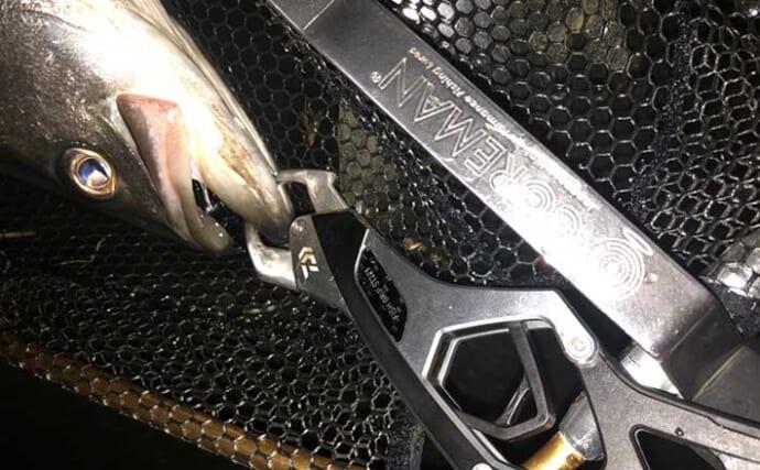 今さら聞けないフィッシュグリップのキホン:素材と対象魚ごとの選び方