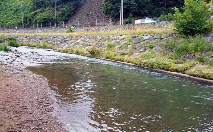 お手軽『小鮎釣り』のススメ 簡単&美味で釣り入門にも好適【柳瀬川】