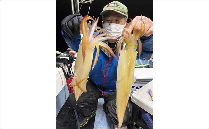 【福岡】夜焚きイカ最新釣果 数・型ともにシーズン序盤から絶好調