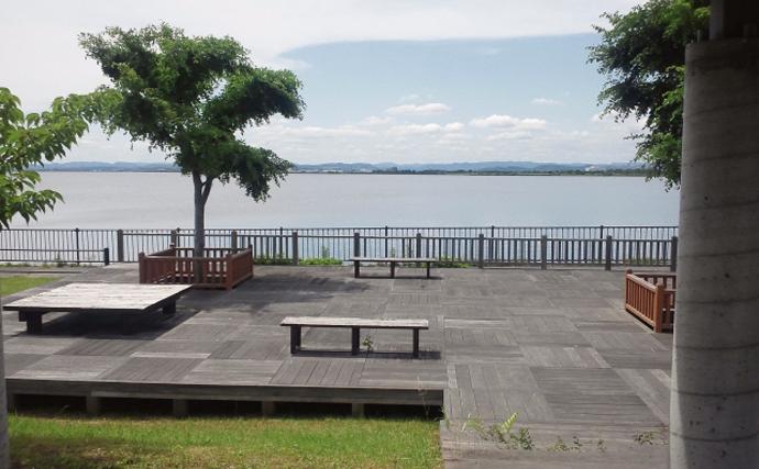 「汚い」で有名な『児島湖』 水質改善に漁業貢献とテナガエビが大活躍?