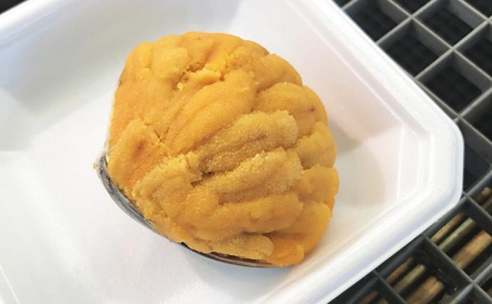 日本全国に存在する「貝焼き」文化 貝殻は名調理器具だった?