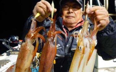 夜焚きイカ釣りでケンサキ好調 40cm級含め40匹【福岡・祐龍丸】