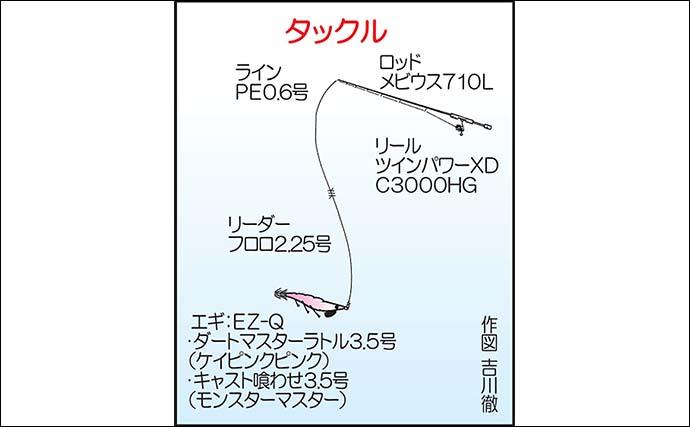 ボートエギングで1kg超アオリイカ続々 全員安打達成【第2健栄丸】
