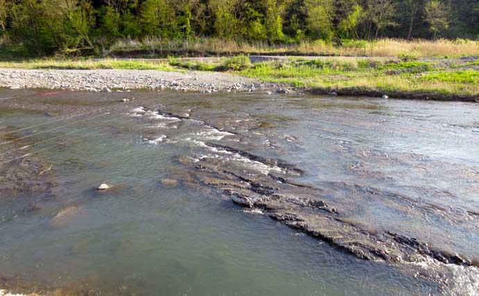 【2021東京】鮎トモ釣りオススメ河川:秋川 浅瀬の泳がせで面を釣ろう