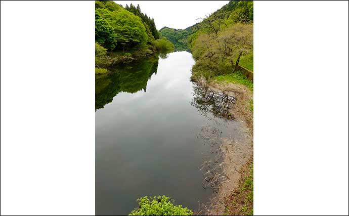 今週のヘラブナ推薦釣り場【茨城県・水沼ダム】