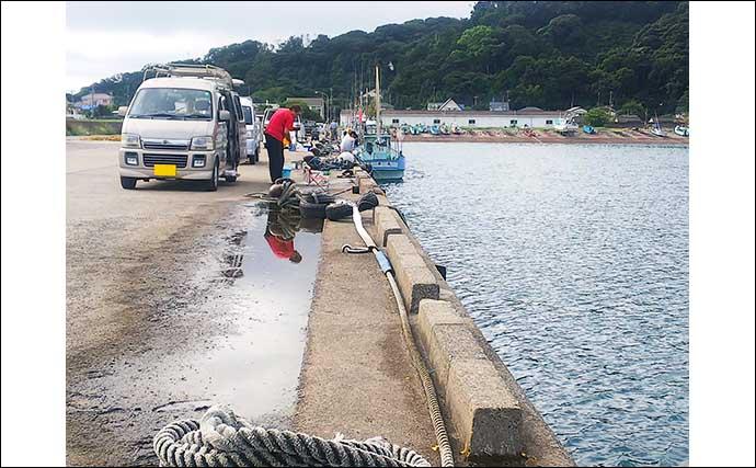 堤防サビキ釣りで小サバ30尾 手返しのテンポがキモ【千葉・富浦新港】