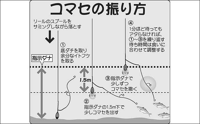 【関東2021】ウィリー五目釣りのキホン 多魚種を狙えて沖釣り入門にも
