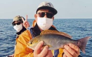 大山沖の船イサキ釣りで40cm級良型本命手中 好ゲストに大アジ【愛知】