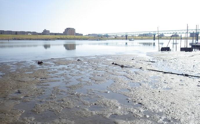 潮干狩りでホンビノス貝とオキシジミ好捕 料理に舌鼓【江戸川放水路】