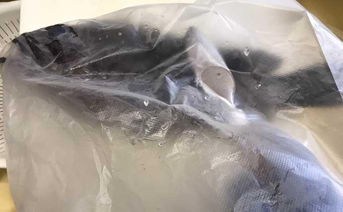 釣魚の「生臭さ」対処法:自宅での下処理6ステップと冷蔵保存の方法